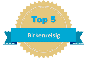 Top 5 Birkenreisig